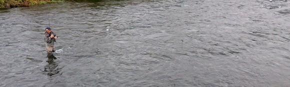 駿河からの甲州清掃会_f0266202_23320846.jpg