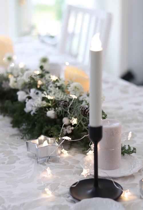フランス・ロワールでの花研修の同窓会。_a0213806_22322649.jpeg