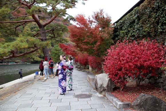 紅葉が盛り 嵐山・亀山公園_e0048413_17464238.jpg