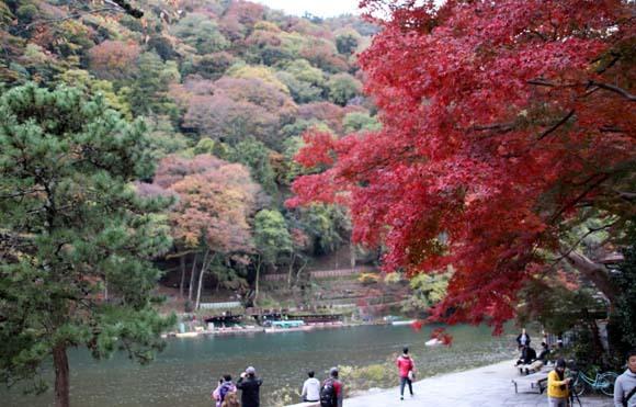 紅葉が盛り 嵐山・亀山公園_e0048413_17464370.jpg