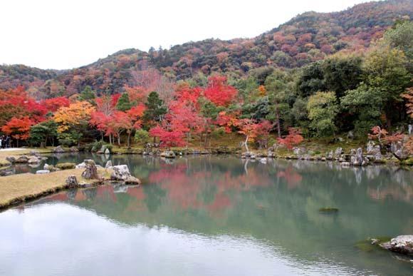 紅葉が盛り 天龍寺など_e0048413_20344688.jpg