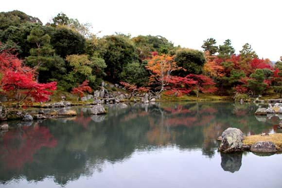 紅葉が盛り 天龍寺など_e0048413_20345412.jpg