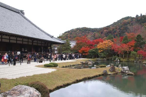 紅葉が盛り 天龍寺など_e0048413_20350617.jpg