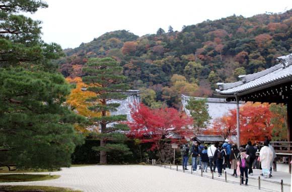 紅葉が盛り 天龍寺など_e0048413_20351307.jpg
