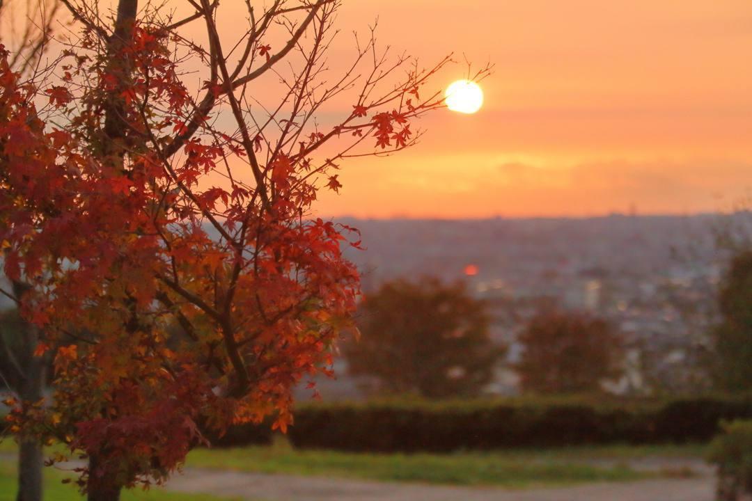 ブログテーマ「秋と言えば紅葉!みんなに見せたい秋の風景ショット2019」_f0357923_17175432.jpg