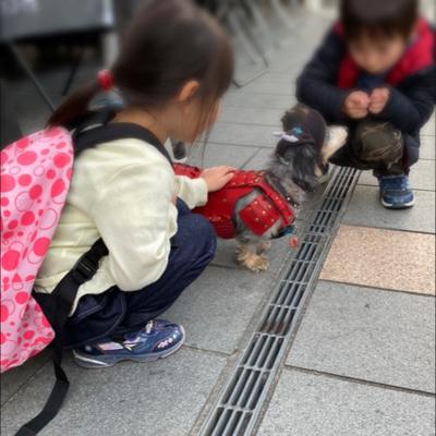 愛とお金と体力を捧げた熊本滞在の記録_c0069036_13230897.jpg