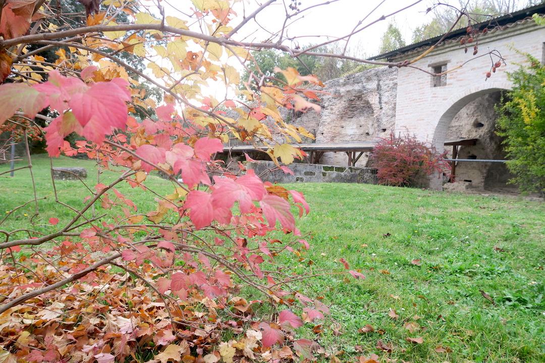 秋色の古代に栄えた町の跡、ウルブス・サルヴィア考古学公園_f0234936_7224586.jpg