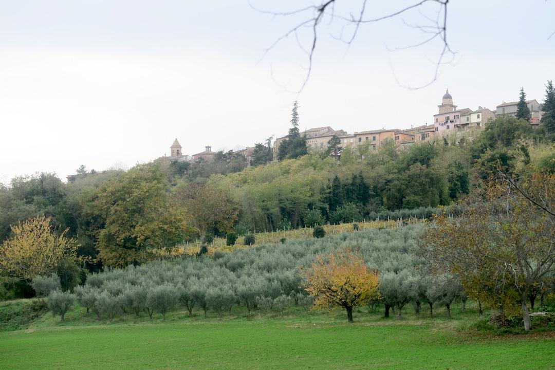 秋色の古代に栄えた町の跡、ウルブス・サルヴィア考古学公園_f0234936_7304614.jpg