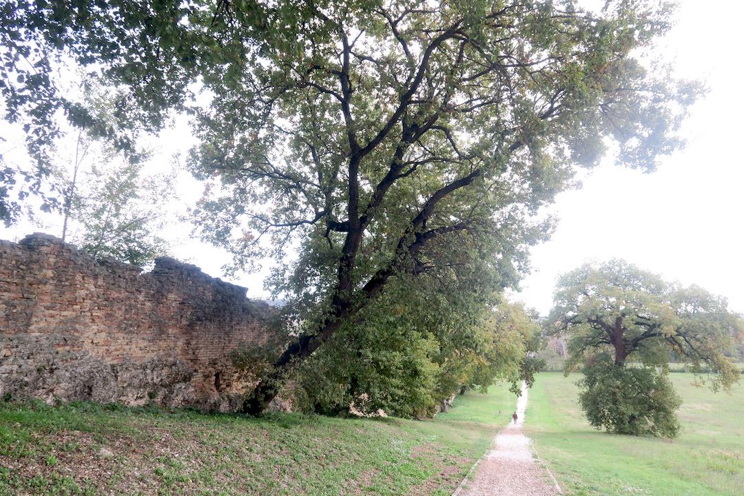 秋色の古代に栄えた町の跡、ウルブス・サルヴィア考古学公園_f0234936_8393064.jpg