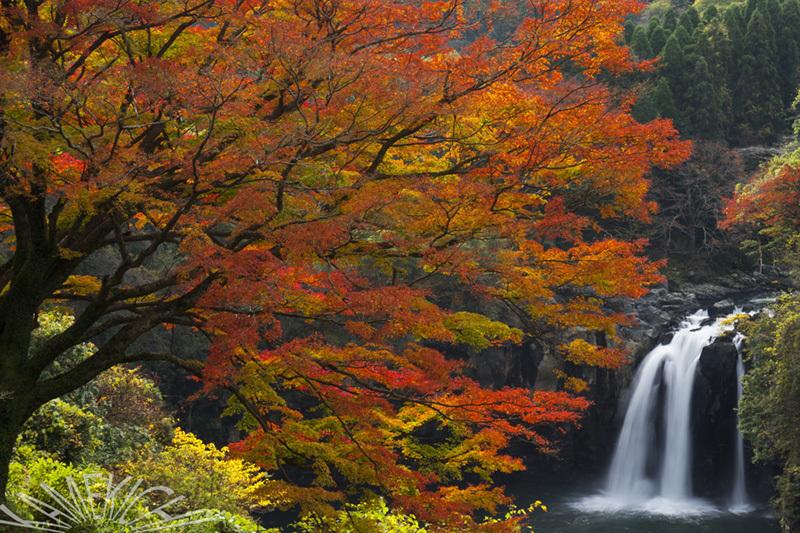 滝!(蔵出し)_a0057752_17502714.jpg