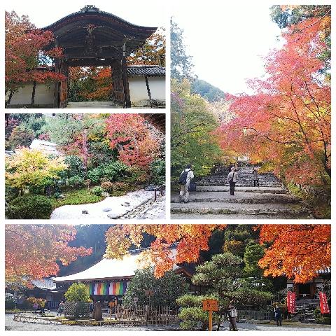 京都プチ散策_f0043559_19495432.jpg
