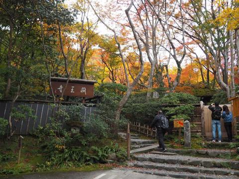 京都プチ散策_f0043559_2031010.jpg