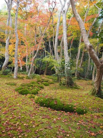 京都プチ散策_f0043559_205128.jpg