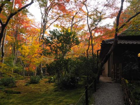京都プチ散策_f0043559_2053218.jpg