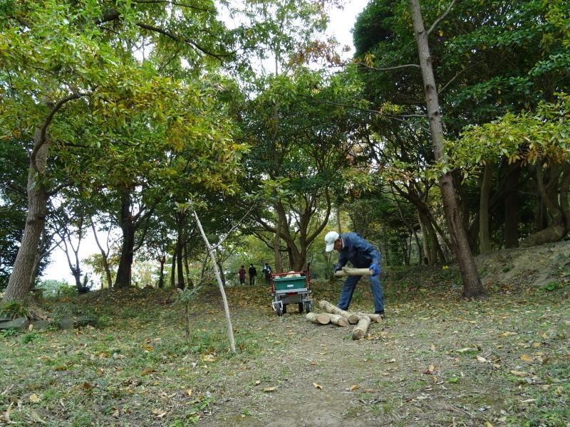 「卯の花とササユリの丘」造り・・・うみべの森_c0108460_16593024.jpg