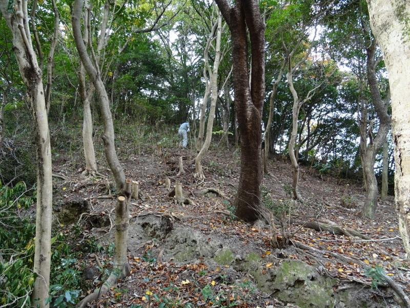 「卯の花とササユリの丘」造り・・・うみべの森_c0108460_17015486.jpg