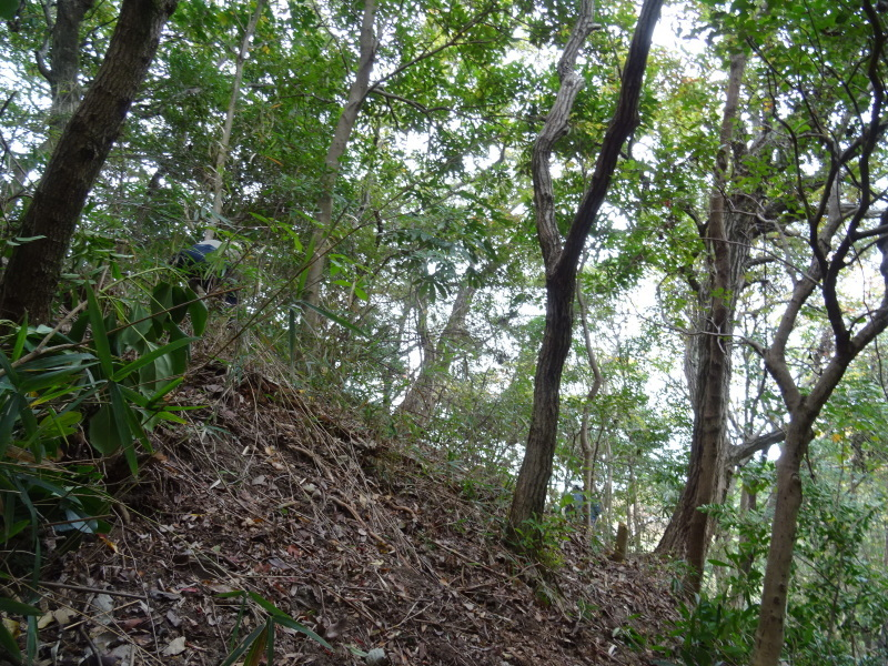 「卯の花とササユリの丘」造り・・・うみべの森_c0108460_17041013.jpg