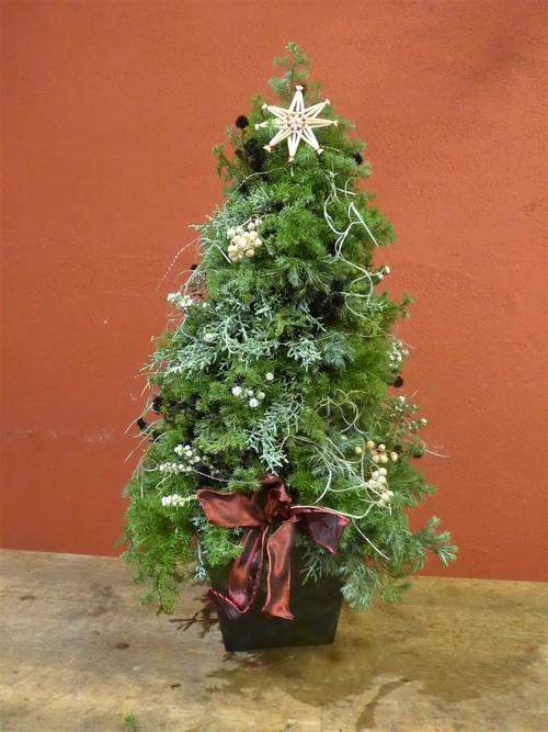 花修行 ~フレッシュハーブのクリスマスツリー~_f0232060_13271950.jpg