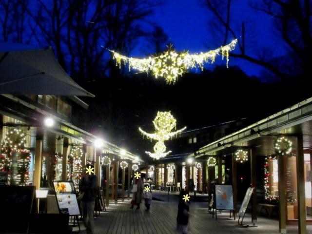 ハルニレテラス「幸せが灯る街」* やどりぎのイルミネーション♪_f0236260_23462916.jpg