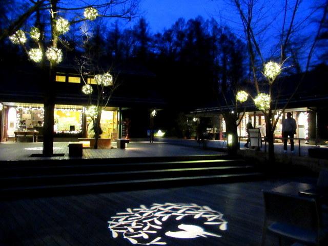 ハルニレテラス「幸せが灯る街」* やどりぎのイルミネーション♪_f0236260_23500284.jpg