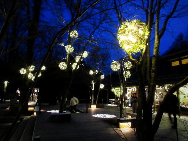 ハルニレテラス「幸せが灯る街」* やどりぎのイルミネーション♪_f0236260_23503345.jpg