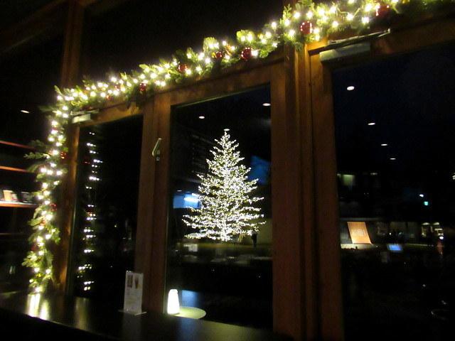 トンボの湯 * もみの木広場のクリスマスツリー★_f0236260_23521872.jpg