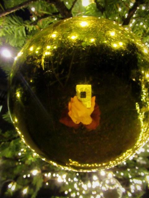トンボの湯 * もみの木広場のクリスマスツリー★_f0236260_23552144.jpg