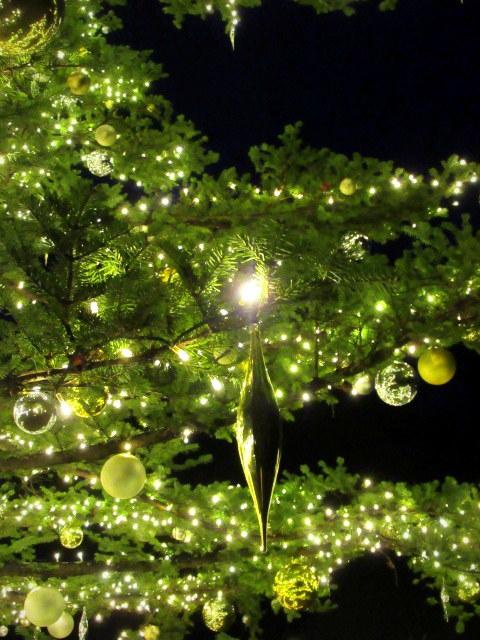 トンボの湯 * もみの木広場のクリスマスツリー★_f0236260_23560083.jpg
