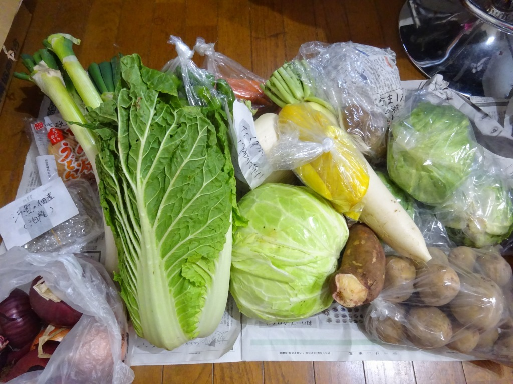 実家からの野菜2019 第五段!連日野菜サラダ美味!キウイも!_d0061678_16041858.jpg
