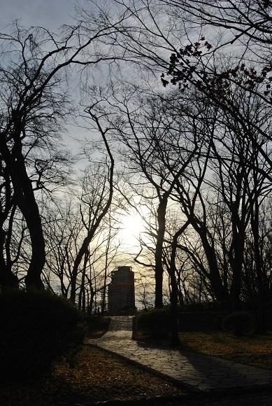 晩秋の千秋公園_d0129083_19043610.jpg