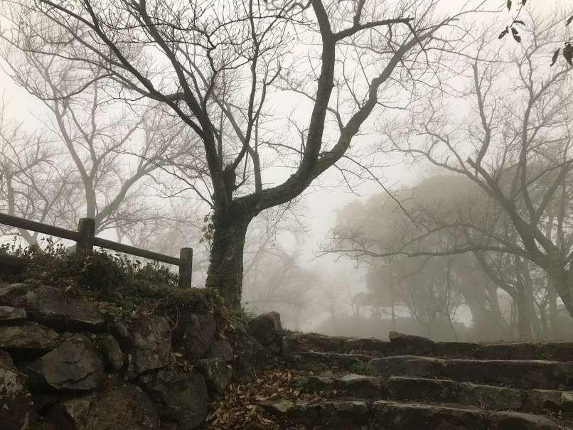 雨の鳥取城に登る_c0144185_1221097.jpg