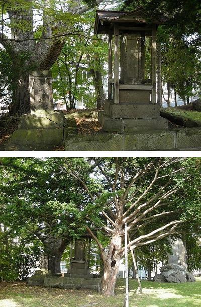 真駒内第一公園と真駒内神社_f0078286_06533577.jpg