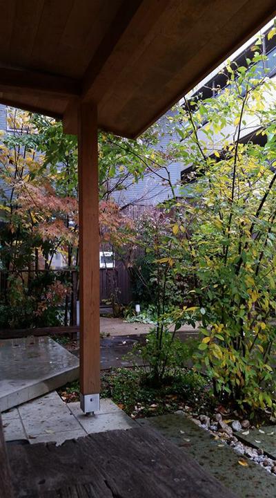 小さな庭の紅葉_d0080906_15562790.jpg