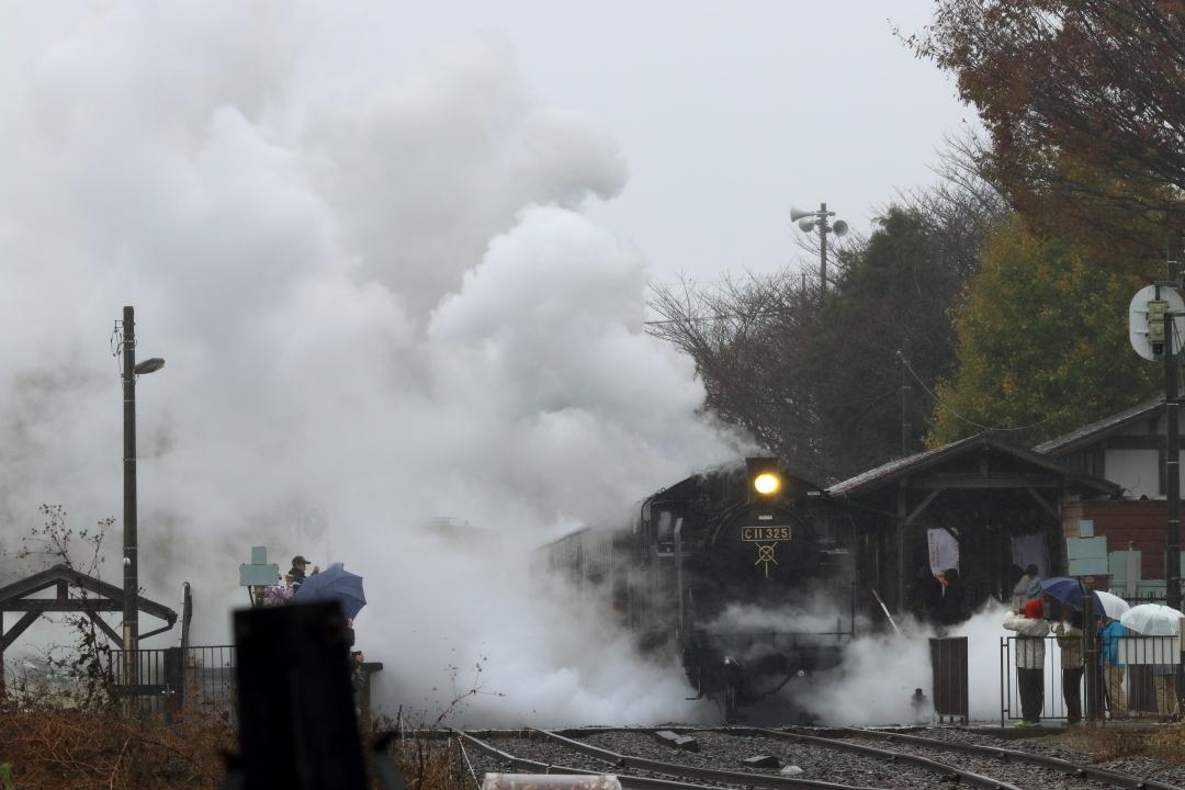 水蒸気を纏う機関車 - 2019年晩秋・真岡鉄道 -_b0190710_20520847.jpg