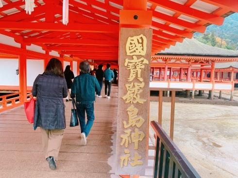 宮島に行ってきました_f0376319_16124725.jpeg
