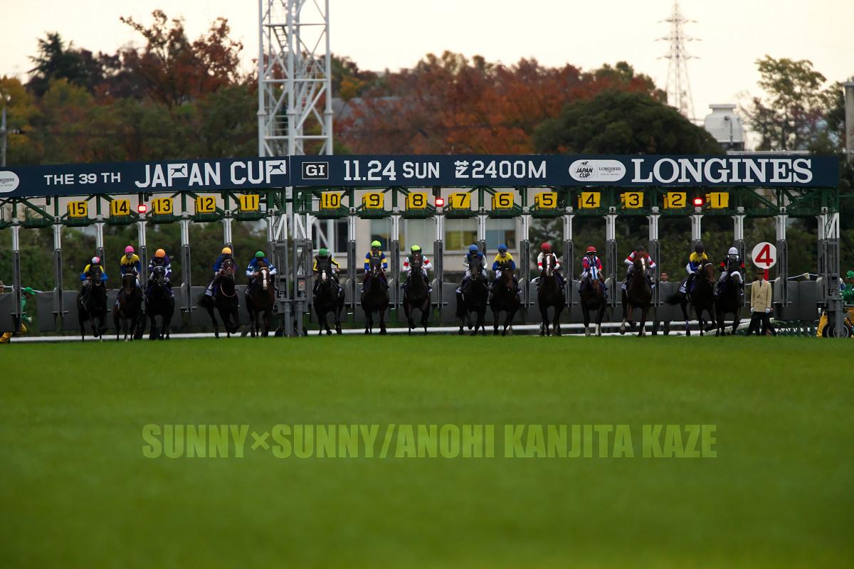 復活劇 第39回ジャパンカップ(GI)_a0204724_19384285.jpg