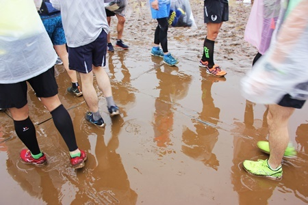 大雨のフルマラソンを完走(三度目)_b0312424_08574183.jpg