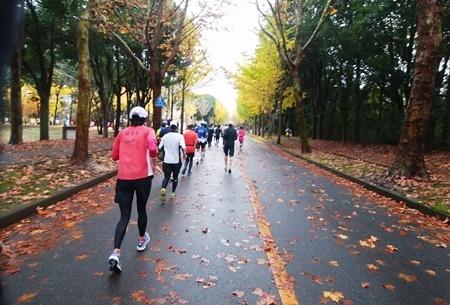 大雨のフルマラソンを完走(三度目)_b0312424_08574244.jpg