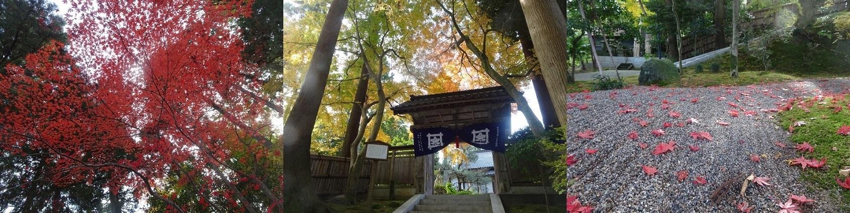 写真展「車椅子目線で巡る金沢の旅」オープニングセレモニー_b0115629_17334846.jpg