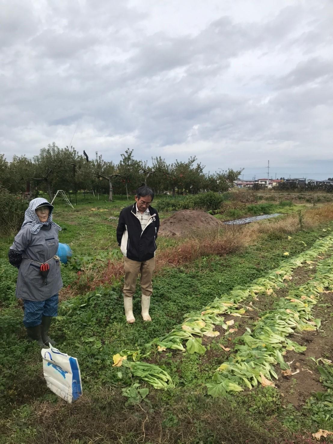 旅する食育!高畠編 山形青菜漬~地域の郷土料理を学ぶ~_b0297136_11332420.jpg