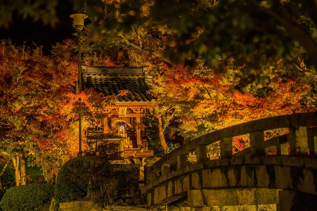 2019京都紅葉~永観堂ライトアップ_e0363038_13305105.jpg