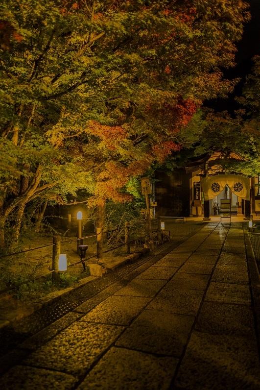 2019京都紅葉~永観堂ライトアップ_e0363038_13310050.jpg