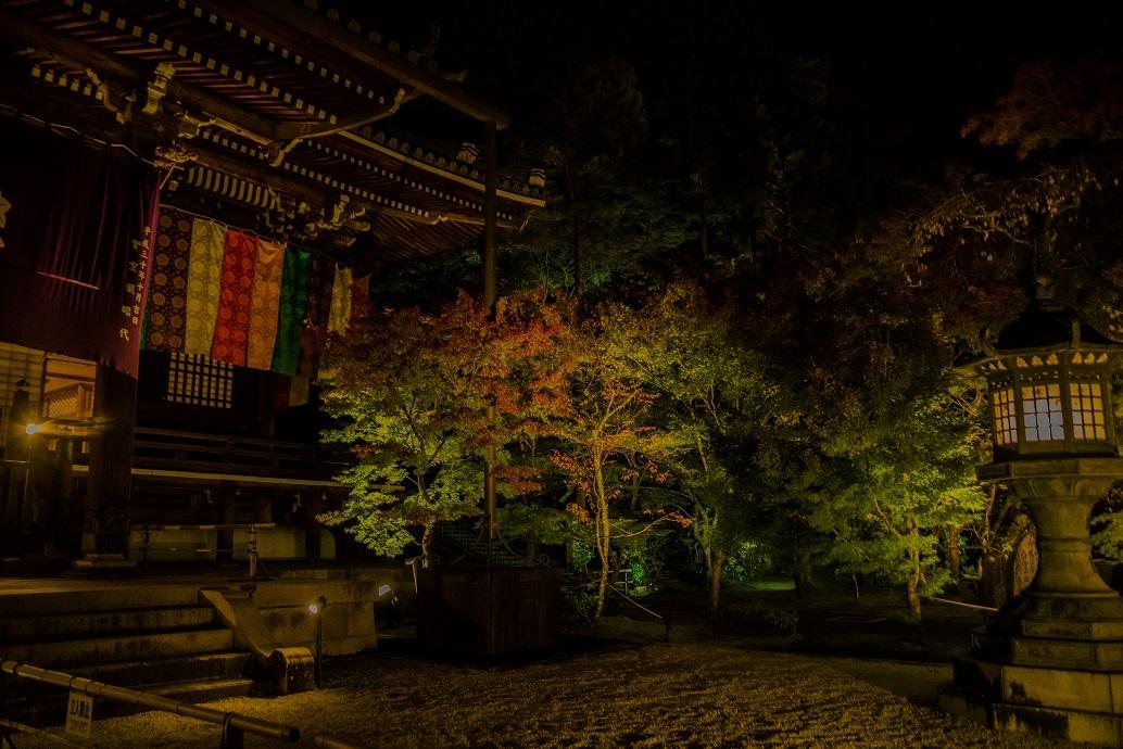 2019京都紅葉~永観堂ライトアップ_e0363038_13310834.jpg
