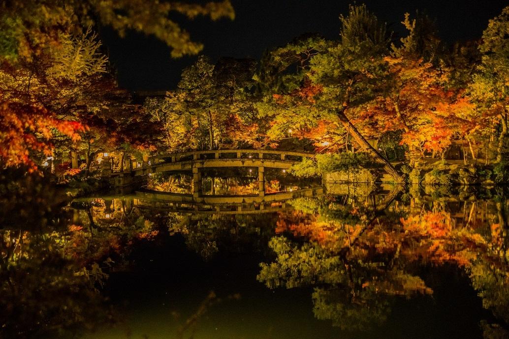2019京都紅葉~永観堂ライトアップ_e0363038_13312246.jpg