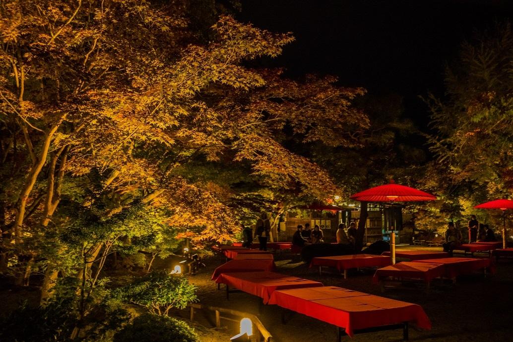 2019京都紅葉~永観堂ライトアップ_e0363038_13312340.jpg