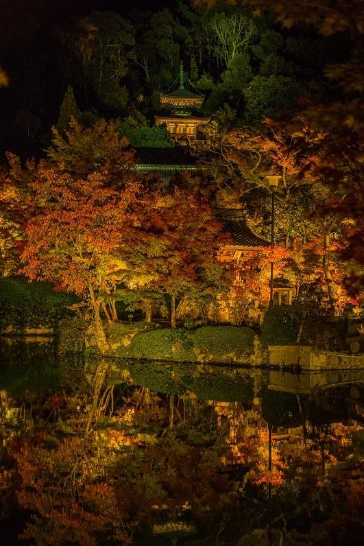2019京都紅葉~永観堂ライトアップ_e0363038_13313340.jpg