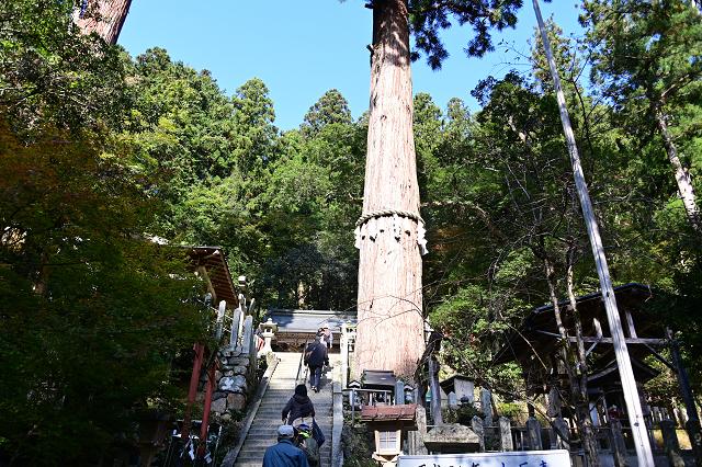 京都 鞍馬山_b0249247_23034603.jpg