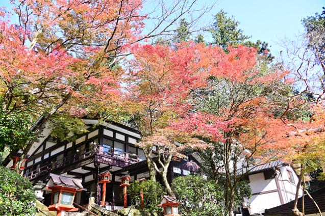 京都 鞍馬山_b0249247_23042892.jpg