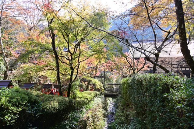 京都 鞍馬山_b0249247_23043317.jpg