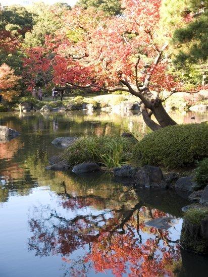 旧古河庭園 薔薇と紅葉(4) Olympus E-1_e0129750_17143200.jpg